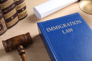 Immigration Appeals Law Firm in Austin